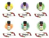 * 6er-Set rein natürliche ätherische Öle | Sechs verschiedene Düfte: Lavendel Lemongras Zitrone Orange Eukalyptus Fichtennadel | Duftöl für Duftlampe Diffusor Potpurri Aromatherapie Sauna | 6 x 10 ml