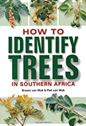 How to Identify Trees in Southern Africa
