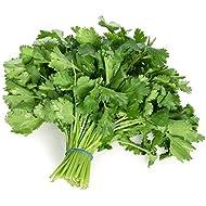 Langmead Herbs Fresh Cut Coriander 100g