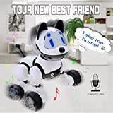 Interactive Dog Toy Voice Recognition Intelligent Electronic Toy Puppy for Girls / Boys - Interactive Voice Control Electronic Pet Dog Robot with Sound, Lights, Music, Dancing Robot Toy Best Friend