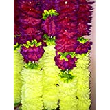 Kinshuk Enterprises - Flower Fancy Toran - 5 Feet - Toran/Door Decoration For Diwali And Other Festivals - Sold By Kinshuk Enterprises