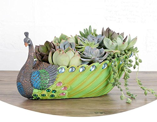 ROOGO Blumentopf für Sukkulenten/kreative Übertopf DIY Fee Garten/ZAKKA -