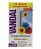VANDAL Fliegenblumen Sommerwiese - 10 Stück Vorteilspackung