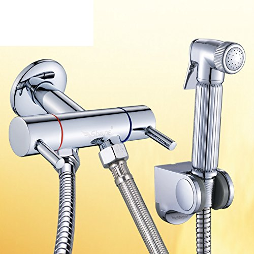 HCP bidet/Toutes les toilettes de la vanne de cuivre Kit de pistolet pulvérisateur