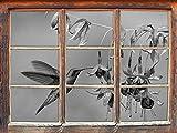 Grüner Kolibri trinkt vom Blütennektar Kunst B&W Fenster im 3D-Look, Wand- oder Türaufkleber Format: 92x62cm, Wandsticker, Wandtattoo, Wanddekoration