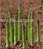 Bloom Green Co. 50 pc verdi Asparagus officinalis Bonsai uno del mondo & # 39; s Top Ten Piatti il più sano Delicious nutriente di verdure Bonsai: 4