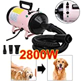 ZanGe 2800W Speed Dog Hair Dryer Dog Cat Pet Grooming Hair Dryer Hair dryer Heater Blaster Blower Adjustable Temperature Heater with 2.5M Flexible Hose and 3 Nozzles