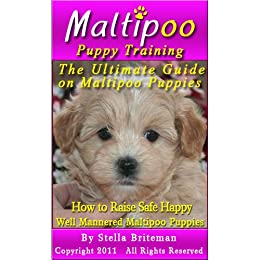 Maltipoo Puppy Training: The Ultimate Guide on Maltipoo Puppies, How to Raise Safe, Happy, Well Mannered Maltipoo Puppies (English Edition) de [Briteman, Stella ]