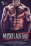 Muskelaufbau: Mit Krafttraining-, richtiger Ernährung und effektiven Trainingsplänen zum...