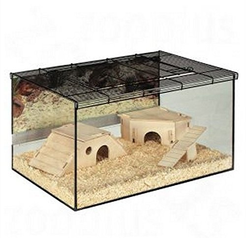 Spacious-Small-Pet-Terrarium-W-Glass-Walls-And-Mesh-Roof-W-Ventilation-Perfect-For-Small-Animals-Which-Like-To-Burrow-Such-As-Hamsters