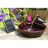 Fontana solare piccione