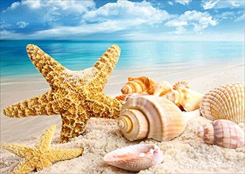 5D Diamond Painting Kit Bricolage en strass Broderie Cross Stitch Arts Craft pour décoration murale à la maison 11,8 * 15,7 pouces (30 * 40 cm) Beach Conch Starfish