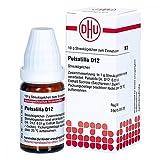 Pulsatilla D 12 Globuli 10 g