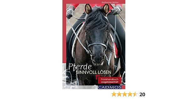 Pferde Sinnvoll Losen Praxishandbuch Losgelassenheit Ausbildung Von Pferd Und Reiter Ebook Moller Katharina Amazon De Kindle Shop