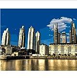 Ciudad De Buenos Aires, Argentina, Rascacielos, Pintura De Números, Lienzo Pintado Para Decoración Del Hogar. 50X60CM