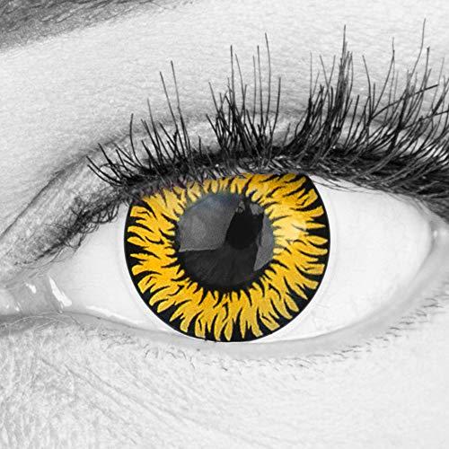 Farbige Gelbe Kontaktlinsen Anime Werewolf Yellow Circle Lenses Ohne Stärke Heroes Of Cosplay Stark Deckend Intensive Farben mit gratis Linsenbehälter farbig für Halloween Fasching
