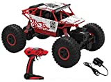 ROCK CRAWLER 1:18 Scale 4WD RALLY CAR with strong suspension and big wheels