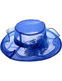 Vbiger Mujeres Visera Verano Sombrero Sol Borde Grande Gasa Flor Retro (Azul)