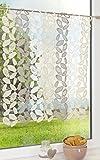 """Scheibengardine von LYSEL® - Stone """" 54cm * 60cm"""" braun"""