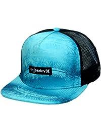 Hurley Herren Sig Zane Trucker Cap blau (MHA0007420-4ec)