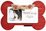 Best CR Gibson Cadres photo - C.R. Gibson Santa Paws Tabletop Photo Frame, Pawsitively Review
