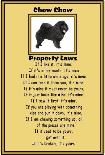 chow-chow-nero-laminati-cartello-formato-a4-con-scritta-property-disposizioni-legislative