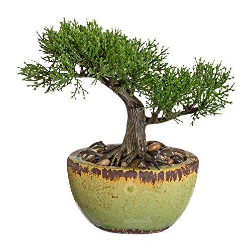 Kunstpflanze »Bonsai«, H