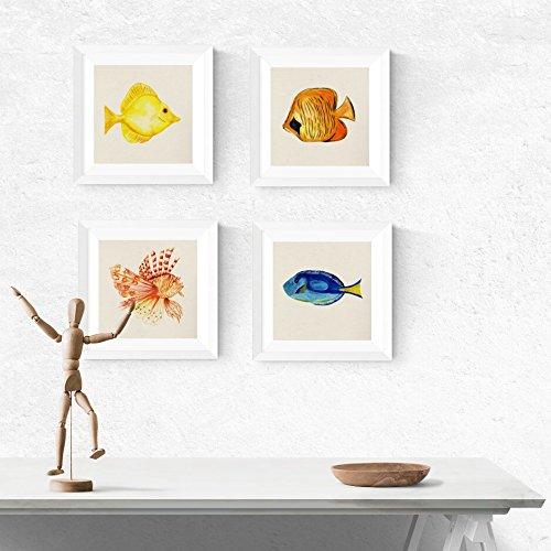 m Rahmen VIER FISH. Quadratische Poster mit Bildern von Fischen. Inneneinrichtung. Rahmen zum Rahmen. Papier 250 Gramm hohe Qualität ()