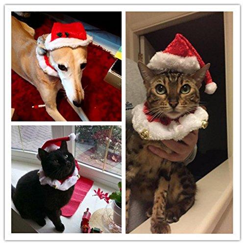 Kragen Weihnachten Hund (2pcs Hund Katze Weihnachten Halsbänder und Hut Kragen mit Glocke Weihnachtshüte Halsband Krawatte Weihnachten Kostüm Set)