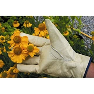 ATP Leather Gardening Gloves - Mens
