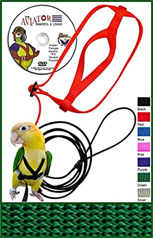 The AVIATOR Pet Bird Harness and Leash: Petite Green Made in America
