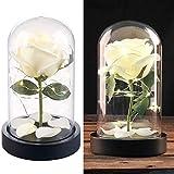 Lunartec Deko: Edle Kunst-Rose mit LED-Beleuchtung in Echtglas-Kuppel, weiß (Dekoblumen)