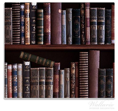 Wallario Herdabdeckplatte / Spitzschutz aus Glas, 1-teilig, 60x52cm, für Ceran- und Induktionsherde, Bücherregal mit alten Büchern