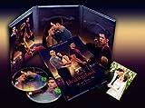 Breaking Dawn - Bis(s) zum Ende der Nacht - Teil 1 (Fan Edition) [2 DVDs] -