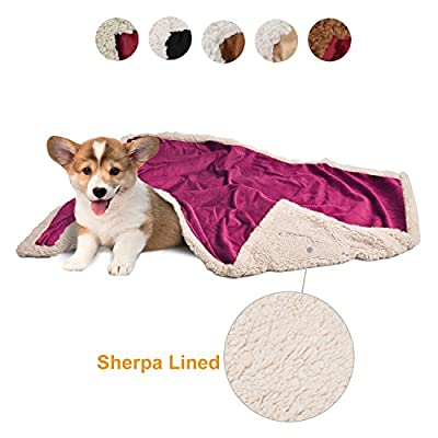 Pawsse Puppy Dog Blanket Thick Sherpa Fleece Luxurious Ultra Soft For Small Medium Dogs Cats Bunny, Comfort Fluffy Pet Sleeping Mat Duvet Suitable For Pet Carrier Sofa Bed Car Seat 114cm x 76cm from Pawsse