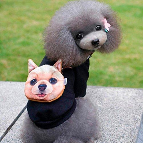 Fashion Hund Kleidung, Pak _ Youth Herbst Winter Baumwolle warme Jacke Pullover Kostüm Lovely Pet Kleidung für Hund (Hoodie Spider Kids)
