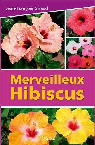 Merveilleux hibiscus par Jean-François Giraud
