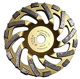 PRODIAMANT Premium Meule Diamant Béton 148/19 (pour Hilti) or PDX82.918