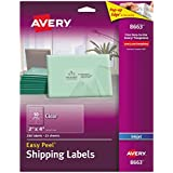 Avery 8663 Ink jet clear address labels, 2 x 4, 250 per pack