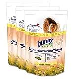 3 x 4 kg = 12 kg Bunny Meerschweinchen Traum