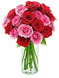 Kabloom Mixed Bouquet of 7 Red and 7 Hot Pink Roses Fresh Flowers
