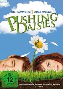 Pushing Daisies - Die komplette erste Staffel [3 DVDs]