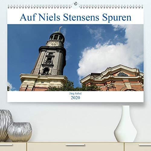 Auf Niels Stensens Spuren(Premium, hochwertiger DIN A2 Wandkalender 2020, Kunstdruck in Hochglanz): Auf den Spuren des seligen Niels Stensen. (Monatskalender, 14 Seiten ) (CALVENDO Glaube)