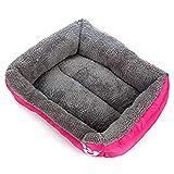 CARDMOE waschbares Hundebett für Hunde und Katzen, hochwertiges orthopädisches Memory-Schaum, wasserfest