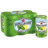 San Pellegrino Limone e Menta Eau Minérale Bouteille 6 x 33 cl