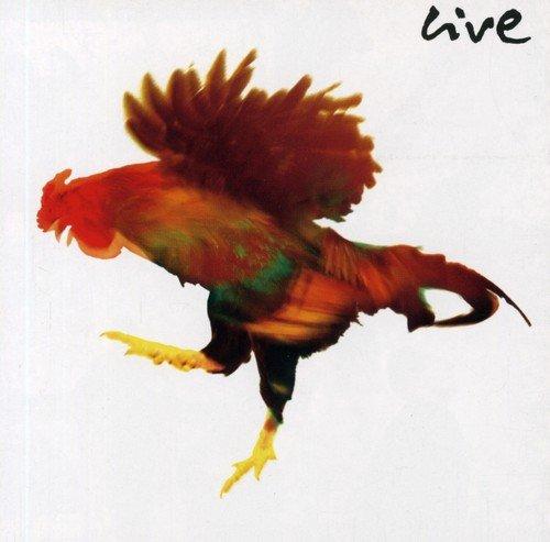 Groenemeyer Live