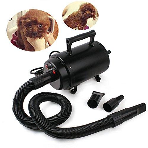 speed-2800w-secador-secador-de-pelo-secador-de-pelo-perros-secadora-de-pelo-para-mascotas-animal-dom