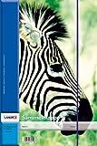 LANDRE 100420019 Sammel-Mappe 10er Pack für DIN A3 mit Gummiband aus hochwertigem Chromoduplex-Karton 4 Motive sortiert