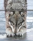 Der Wolf: Wild und faszinierend - Shaun Ellis