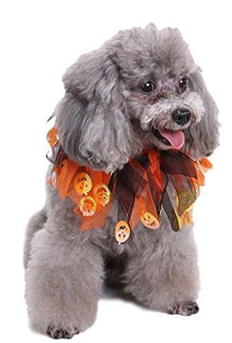 Tier Haustier Hund Katze Mardi Gras Kragen Kostüm Kleid Kostüm Outfit - Orange, Large (Mardi Gras Hund Kostüme)